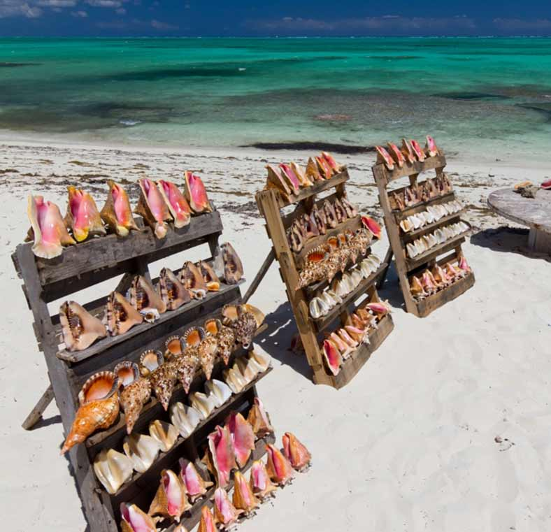Top Things To Do In Turks Amp Caicos Lonely Planet