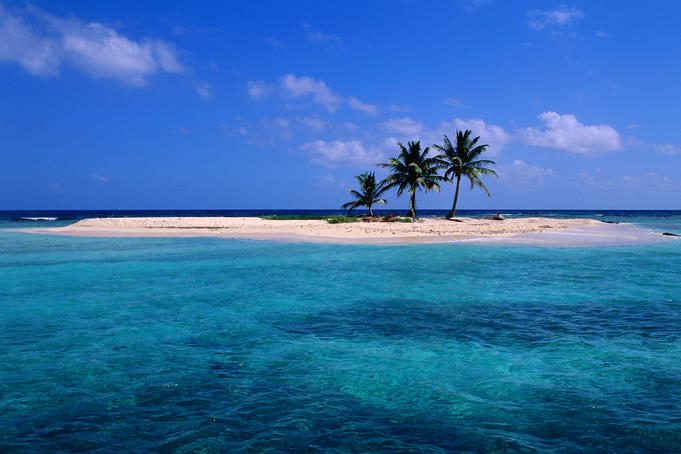 Coconut palms on a coral sand island in the blue-green waters of the Caribbean Sea off Lighthouse Reef.