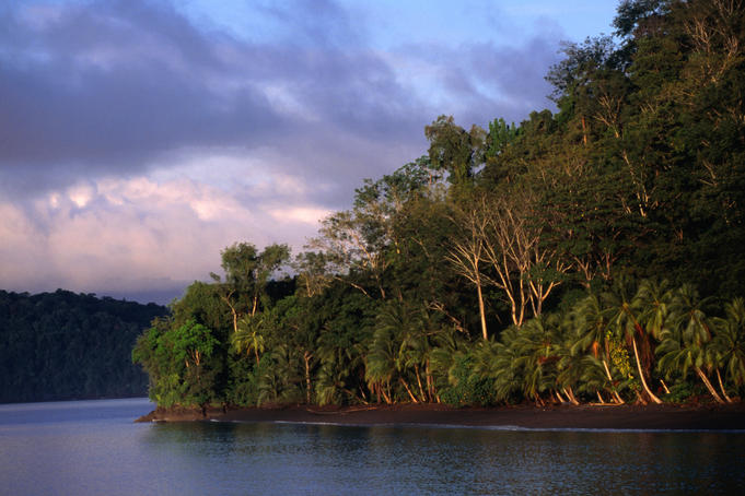 Tropical rainforests of Golfo Dulce in the Corcovado National Park.