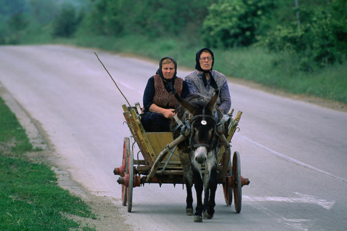 Women travelling on donkey and cart.