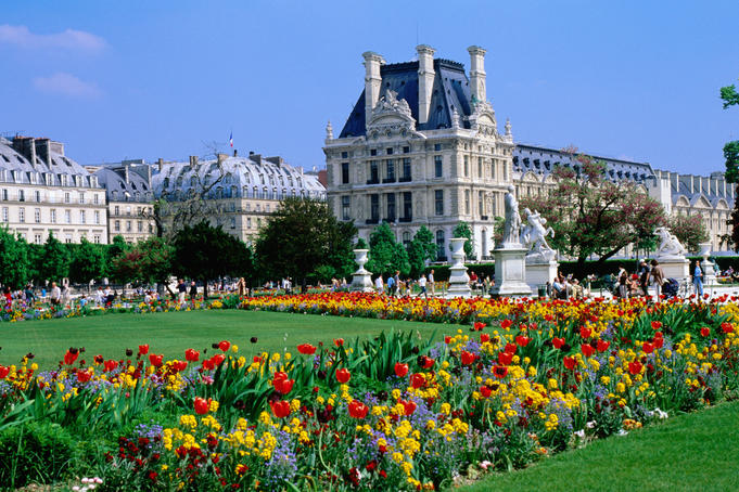 The flowers in the garden outside the Louvre - Paris, Ile-de-France