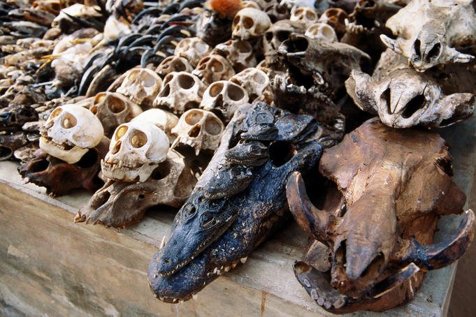 Bones in Akodessewa Fetish Market.
