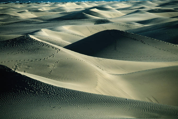 Sand dunes of Playa de Maspolomas.