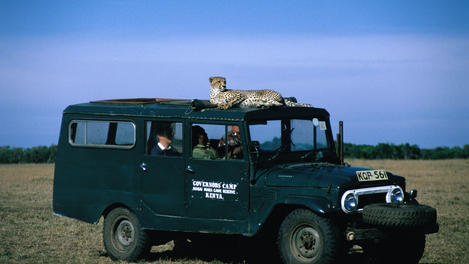 Safari jeep with cheetah, Kenya