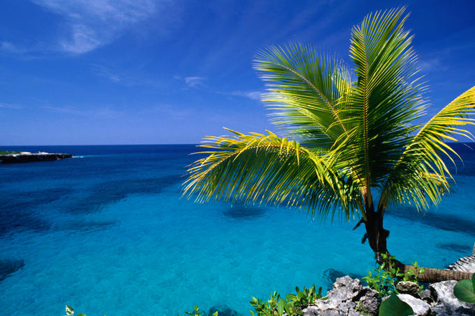 top 10 jamaica travel experiences lonely planet