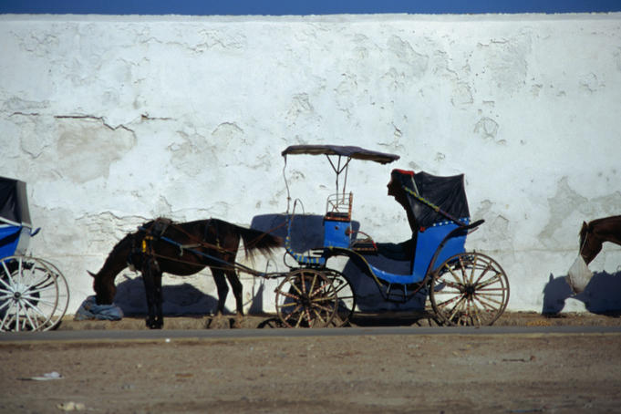 Horse and carriage taxi, Essaouira