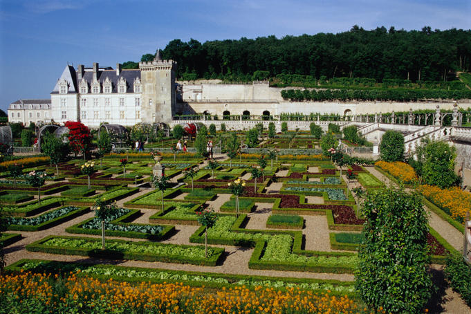 Chateau de Villandry vegetable garden, chateau and woods behindin the Loire Valley.
