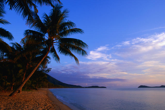 Palm trees and Double Island from Kewarra Beach in Cairns.