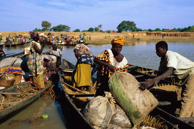 People unloading pirogues on the Bani River at Djenne's main northern entrance on Monday market day.