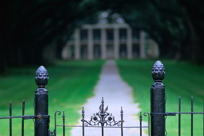 Looking along the approach pathway to Oak Alley Plantation.