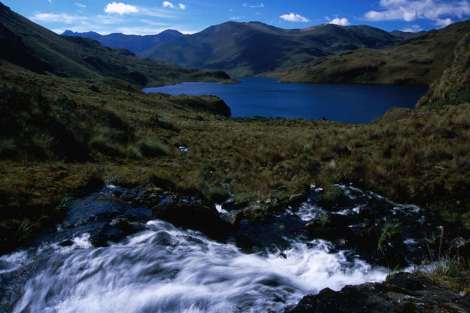 Cascade above Laguna Canutillos in the Cajas National Park.