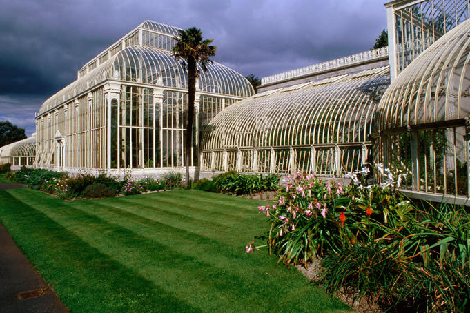 Glasshouse, National Botanic Gardens.