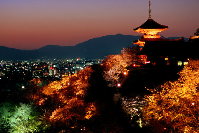 Main hall, sakura trees and pagoda lit up at night at Kiyomizu-dera temple.