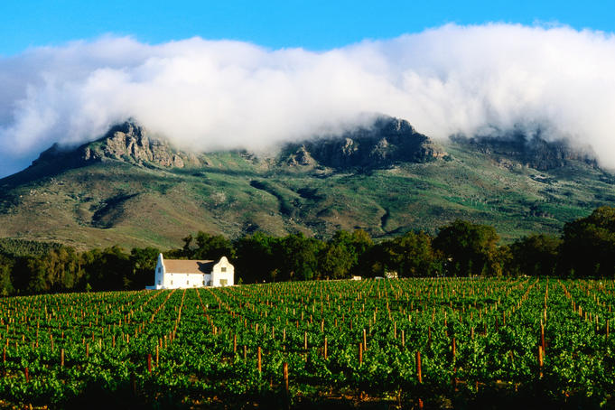 Cape Dutch colonial manor house and vineyard with mountain backdrop, Dornier.