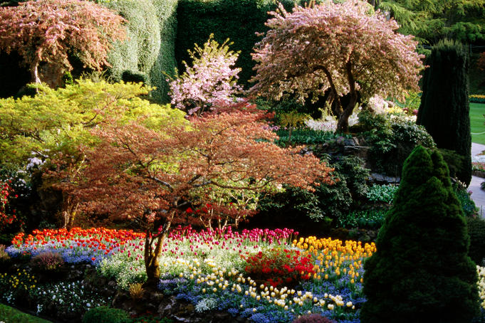 Butchart Gardens.