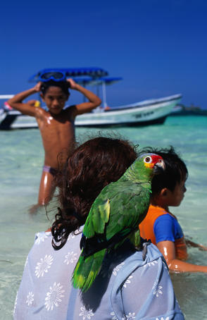 Pet parrot with family at beach, Cancun area.