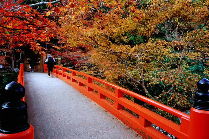 Bridge leading to Saimyo-ji.