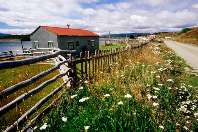 Buildings, fences and wildflowers at oldest estancia (cattle station) in Patagonia.