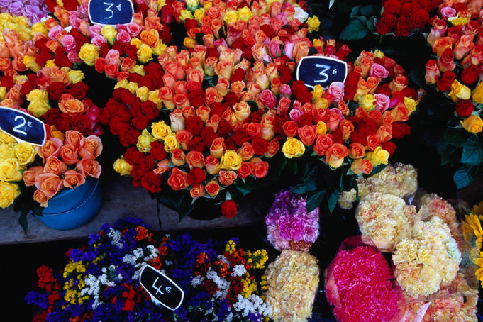 Flowers for sale at a morning market on Cours Saleya in the old town.