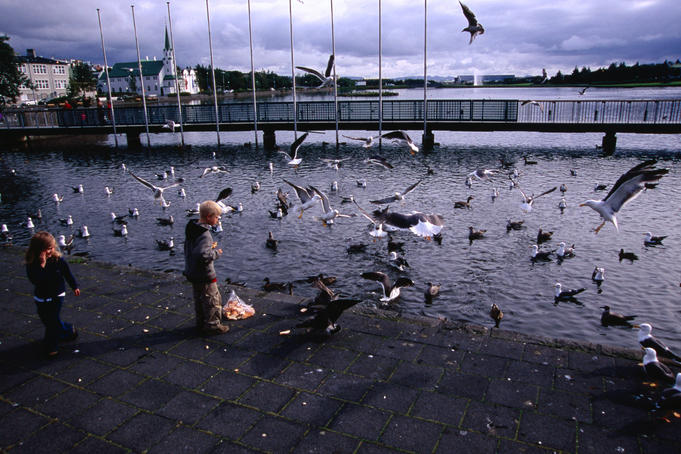Children feeding birds at Tjorn.