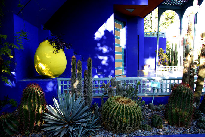 The Majorelle Gardens.