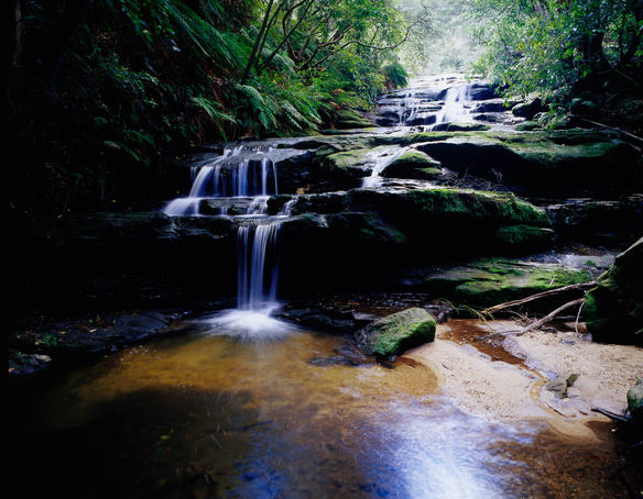 Leura Cascades.