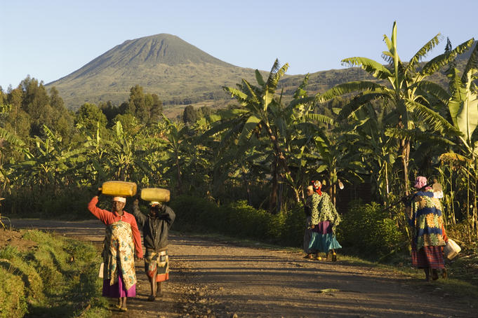 People walking along road with banana plantation and Muhabura volcano behind, Parc National des Volcans.