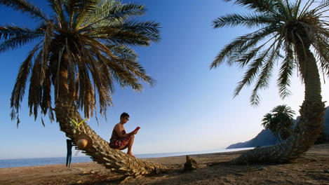 Tourist sitting on beach, Sinai