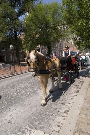 Horse cart in historic area.
