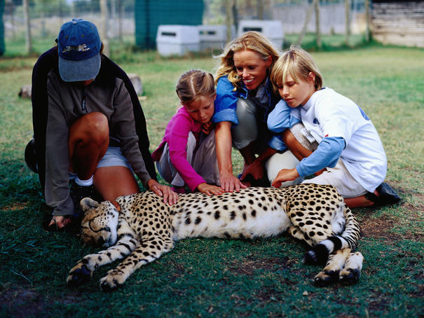 Family patting cheetah with trainer at Speer reufuge for wild animals.