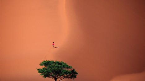 Hiker climbing giant sand dune, Namibia