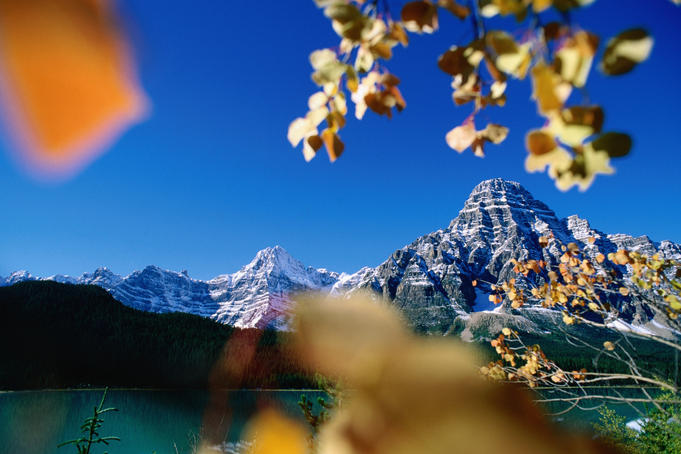 Mountains surround Waterfowl Lake in autumn.