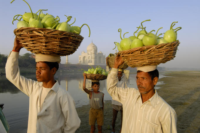 Vegetable sellers crossing Yamuna River at sunrise in front of Taj Mahal.