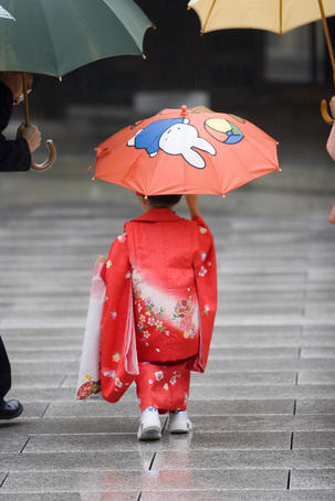 Young girl, in traditional kimono with her umbrella at Meiji-Jingu, in Omote-Sando.