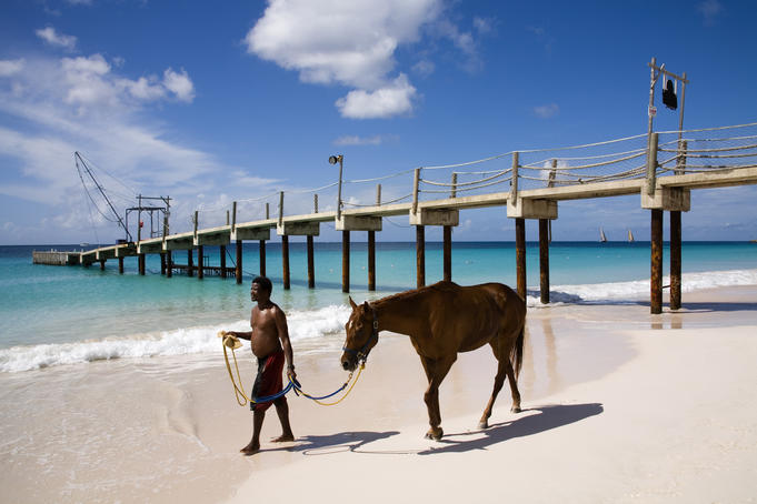 Man leading horse near pier at Carlisle Bay Beach.