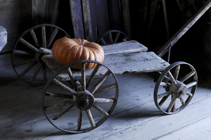 Pumpkin on antique wagon, King's Landing Historical Settlement.