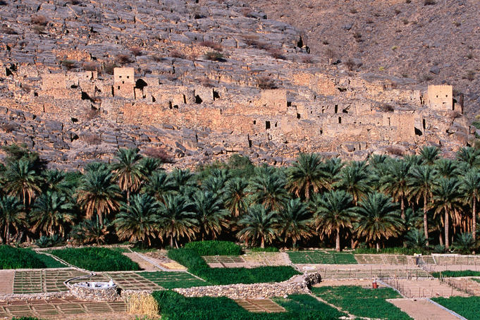 Fields and palm trees near abandoned village of Ghul, Wadi Ghul.