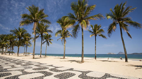 Palm trees, Ipanema Beach, Brazil