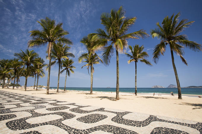 Palm trees by the distinctive wavy tile pavement at Ipanema Beach.