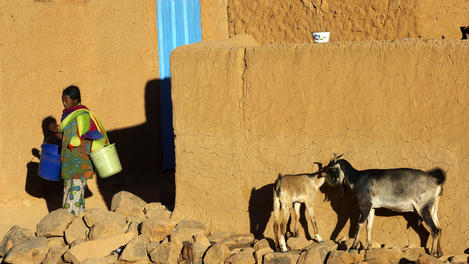 Woman carrying buckets and goats, Niger