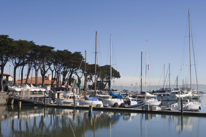 Sailboats moored at San Francisco Marina.
