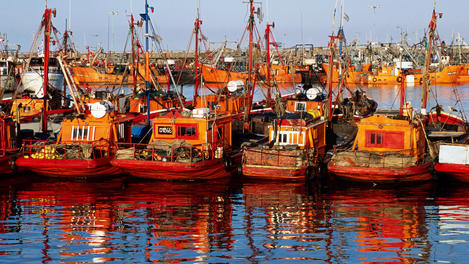 Fishing boats, Mar Del Plata