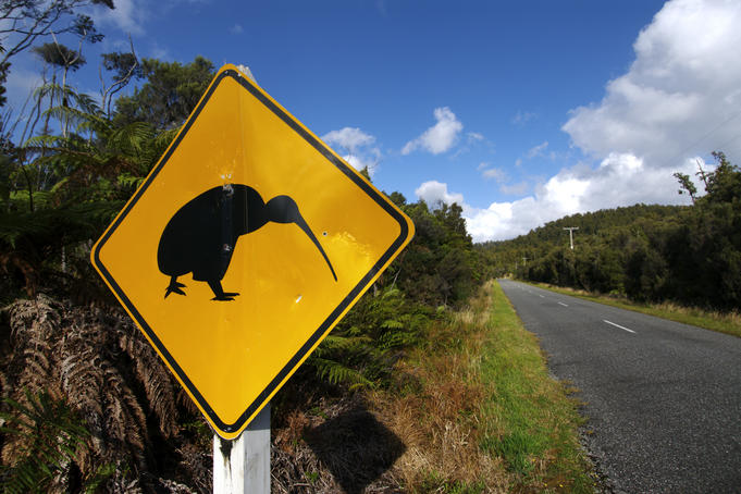 Kiwi sign along road to Gillespies Beach.