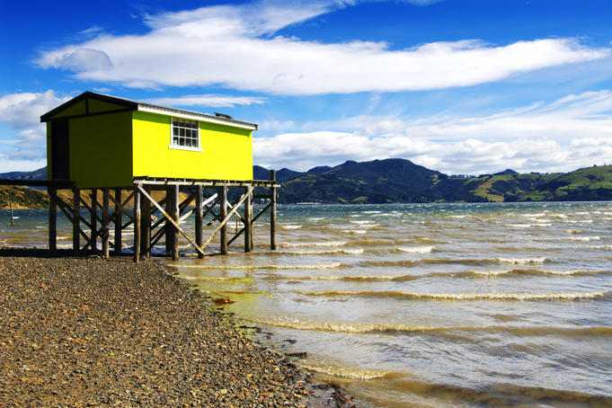 Wooden boathouse at end of pier, Otago Harbour.