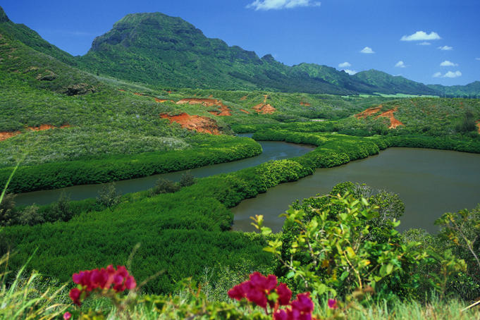 Overlooking a verdant green valley with Hule'ia Stream (left) and ancient Menehune Hawaiian fishpond (right) - seen from Hulemalu Road.