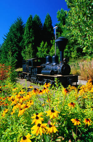 Steam train at World Forestry Museum, Portland, Oregon