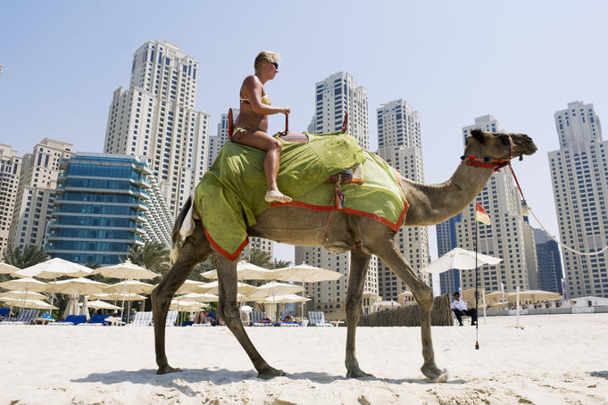 Tourist taking a camel ride on the beach in Dubai Marina.