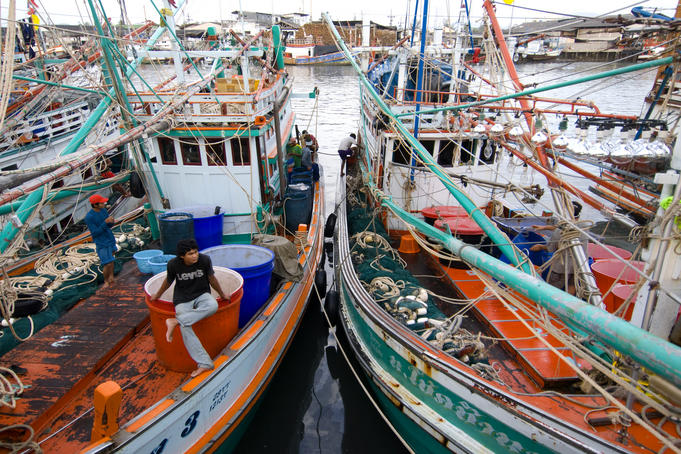 Fishing boats at pier.
