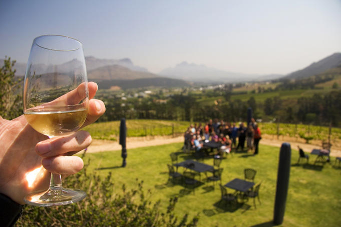 Glass of white wine in hand with vineyard in background.