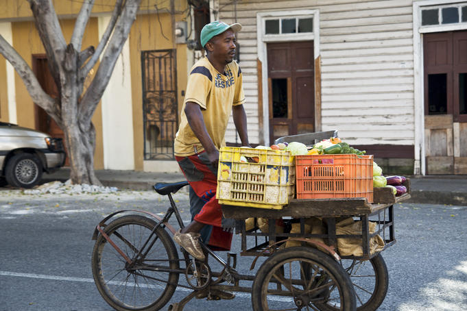 Produce vendor pedalling through the streets on bicycle.
